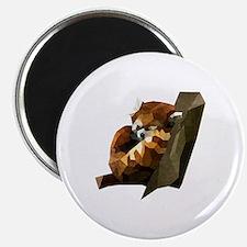 Cute Red panda Magnet