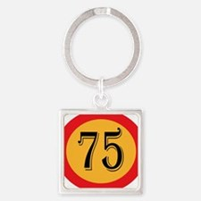 Number 75 Keychains
