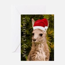 Merry Christmas Kangaroo Joey Card Greeting Cards