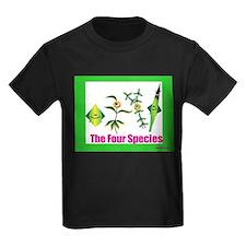 The Four Species Sukkot T