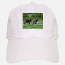 Two Miniature Donkeys Baseball Baseball Cap