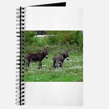 Two Miniature Donkeys Journal