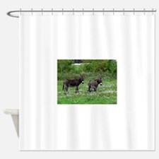 Two Miniature Donkeys Shower Curtain