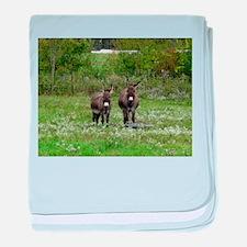 Two Miniature Donkeys (2) baby blanket
