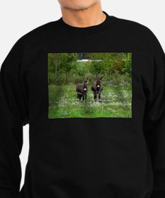 Two Miniature Donkeys (2) Sweatshirt