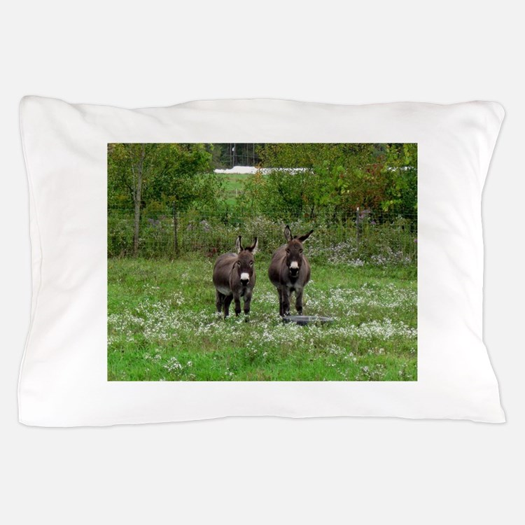 Two Miniature Donkeys (2) Pillow Case