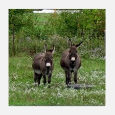 Two Miniature Donkeys (2) Tile Coaster