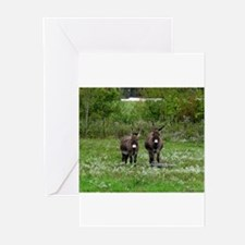 Two Miniature Donkeys (2) Greeting Cards