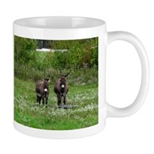 Two Miniature Donkeys (2) Mugs