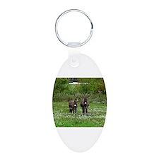 Two Miniature Donkeys (2) Keychains
