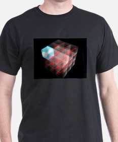 Funny Computer security T-Shirt