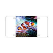 ClownFish20151006 Aluminum License Plate