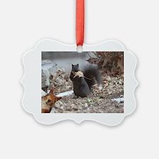 Squirrel Humor Ornament