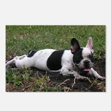 Postcards (Package of 8) French Bulldog
