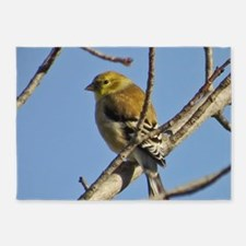 Goldfinch 5'x7'Area Rug