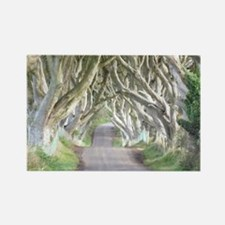 DARK HEDGES, IRELAND Rectangle Magnet
