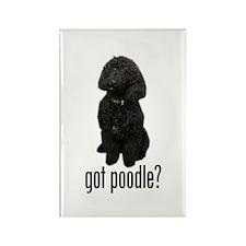 Got Poodle Rectangle Magnet