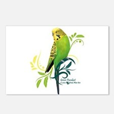 Green Parakeet Postcards (Package of 8)