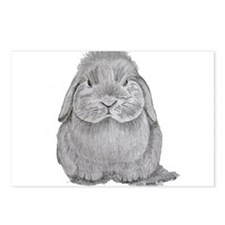 Holland Lop by Karla Hetzler Postcards (Package of