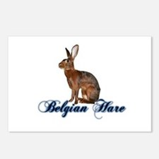 Belgian Hare Postcards (Package of 8)