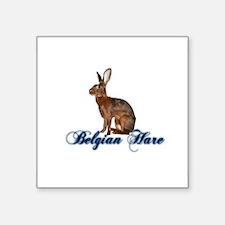 Belgian Hare Sticker