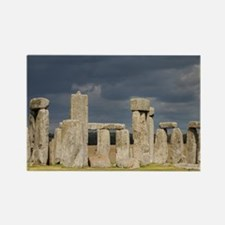 Unique Prehistoric kingdom Rectangle Magnet