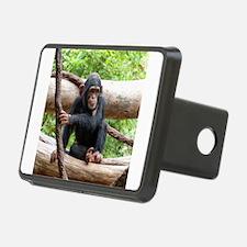 Cute Chimpanzee Hitch Cover