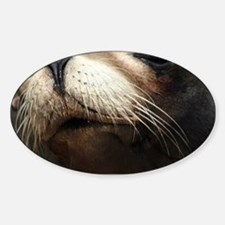 CUTE SEA LION Sticker (Oval)