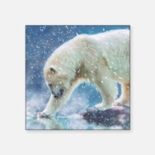 A polar bear at the water Sticker
