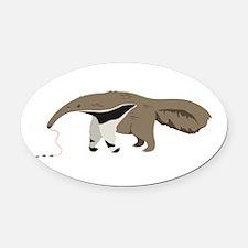 Anteater Ants Oval Car Magnet