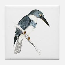 Belted Kingfisher Tile Coaster