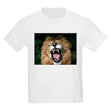 lions023_3059x2294 T-Shirt