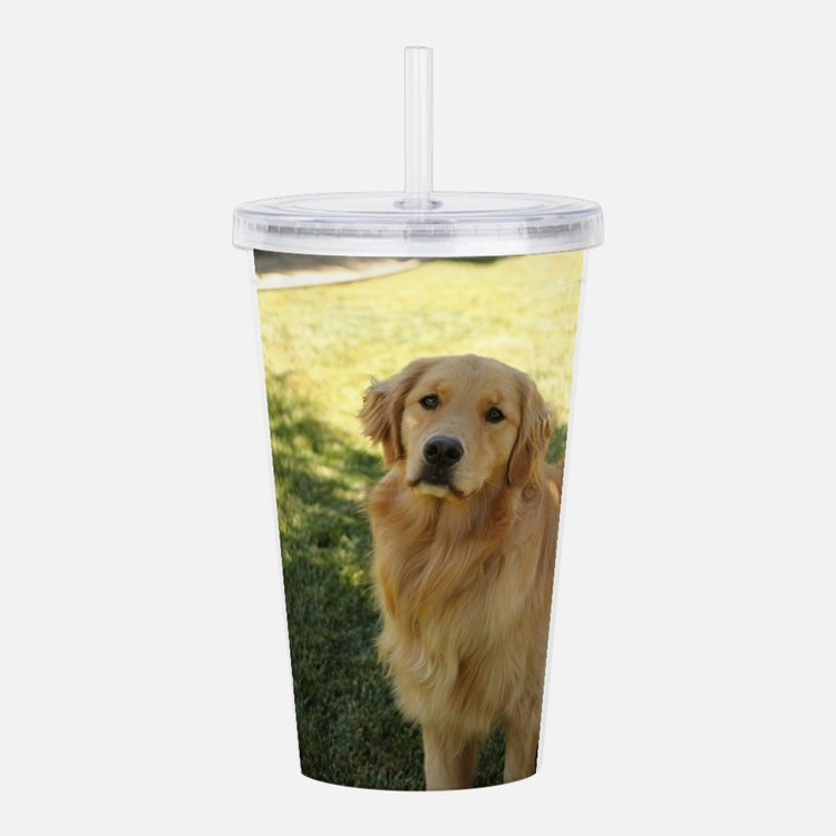 golden retriever n Acrylic Double-wall Tumbler