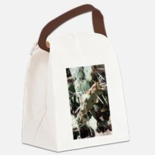 Typical Tucson Prickly Pear - Low Canvas Lunch Bag