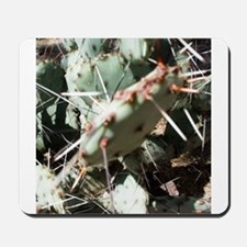 Typical Tucson Prickly Pear - Low Growin Mousepad