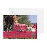 Ccf Cheetah 20 Pk Greeting Cards