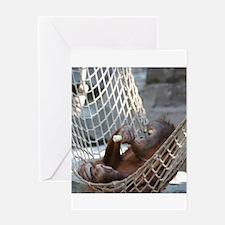 OrangUtan014 Greeting Cards