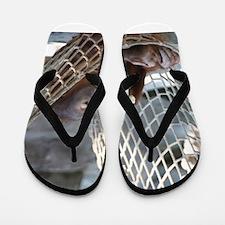 OrangUtan014 Flip Flops