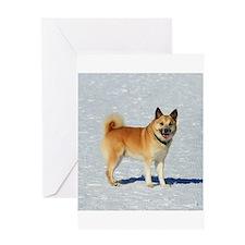 IcelandicSheepdog018 Greeting Cards