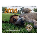 Coonhound Calendars