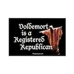 Voldemort is a Republican Magnet