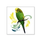 Parakeets Square