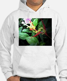 heliconia Hoodie