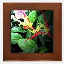 heliconia Framed Tile