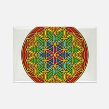 Flower of Life Chakra1 Rectangle Magnet