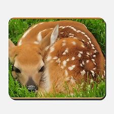Resting Fawn Deer Mousepad