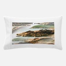Acadia National Park Coastline Pillow Case