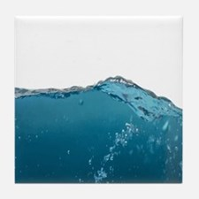 Funny Water Novelty Humor art Tile Coaster