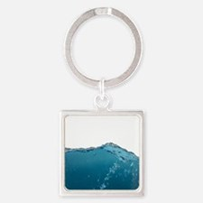 Funny Water Novelty Humor art Keychains