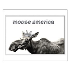 Moose America Posters